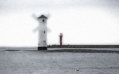 Baltic Business Forum z czarnym łabędziem