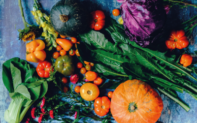 Organic food specjalnością Ukrainy