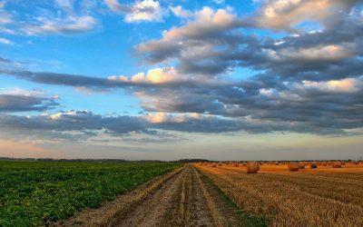 Rolnictwo miesiąc później