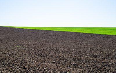 Ile za hektar?