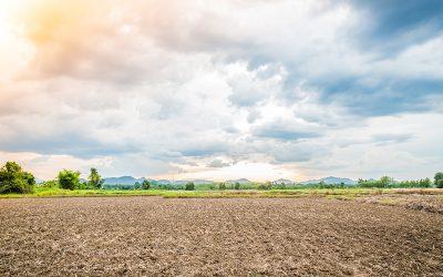 Monitoring rynku ziemi