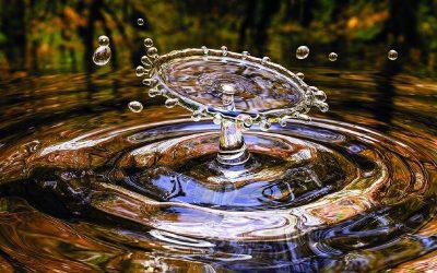Więcej wody!