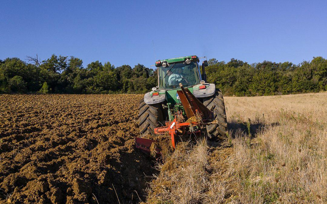 Pracownik rolny poszukiwany