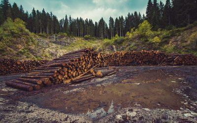Powstanie fundusz klimatyczny