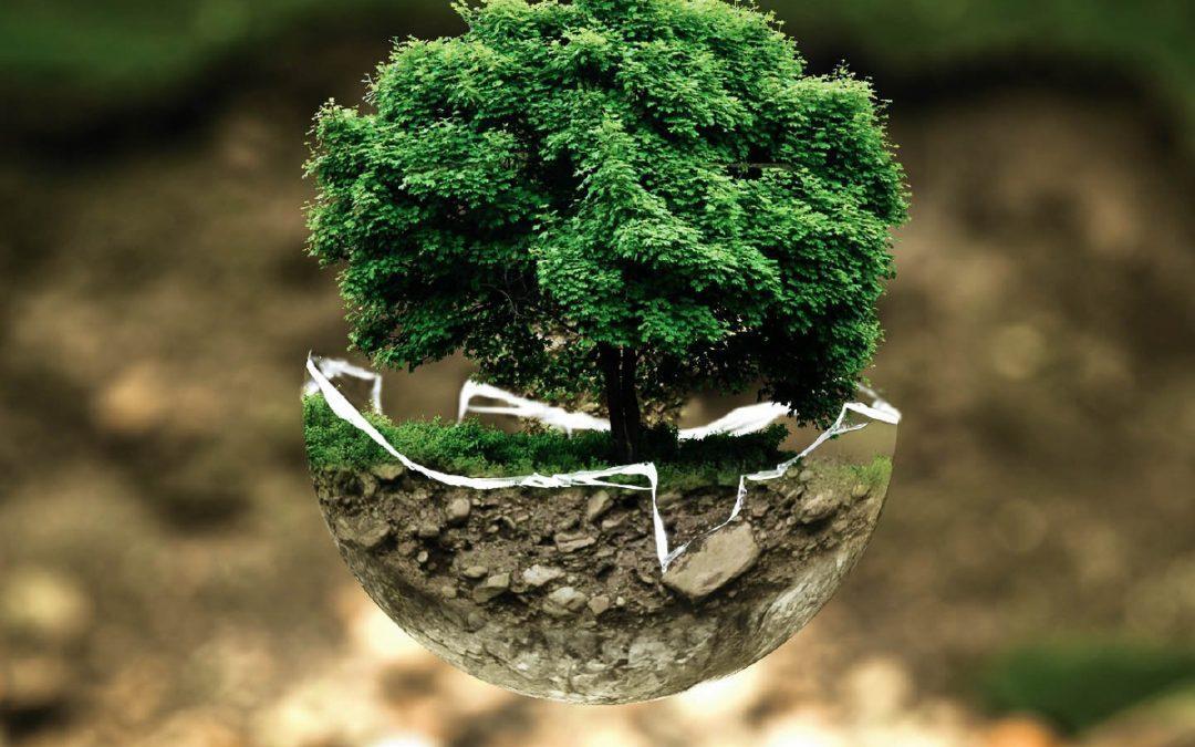 Екологічні ініціативи – в топі